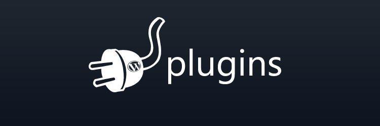 Kansas WordPress Managed Website Hosting