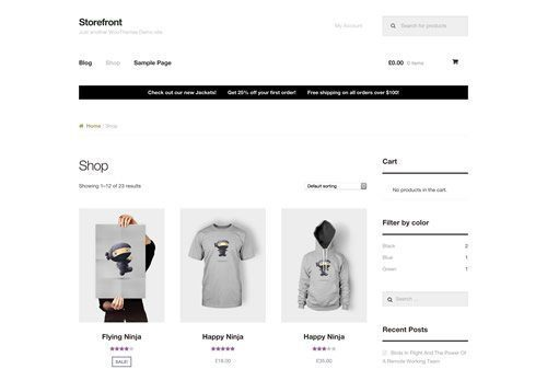 eCommerce Website Design WordPress Shopify